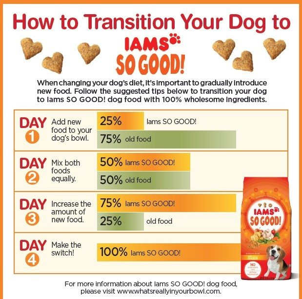 transition dog food