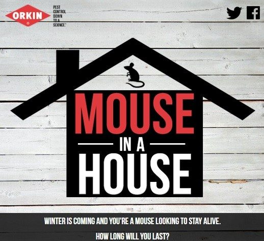 orkin mouse in the house cold