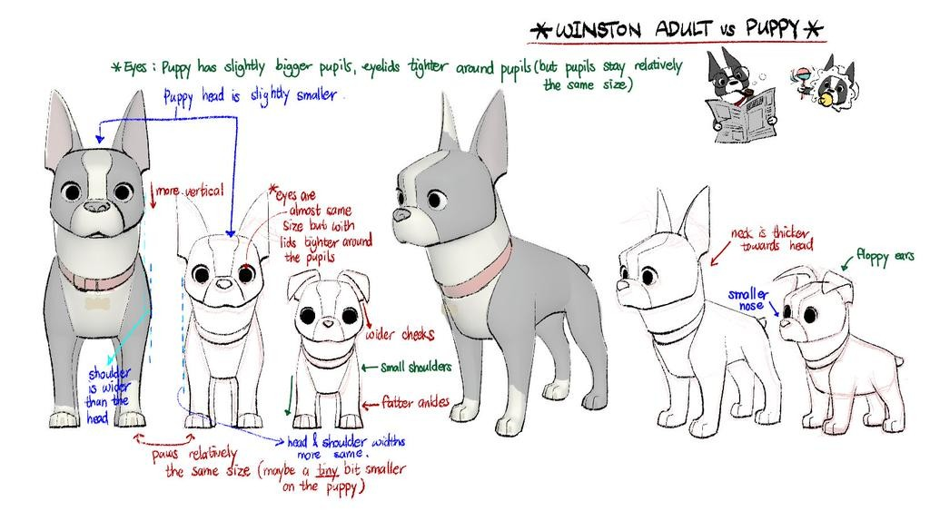 winston adult vs puppy