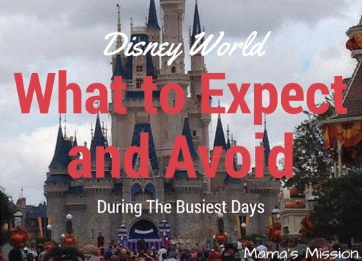 What to expect and avoid disney world busiest days