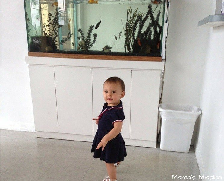 Enfamil AR Rice Formula Pediatrician Baby Spit Up