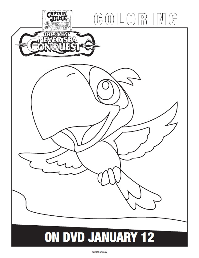 Pirate Parrot Coloring Pages Latest Pirate Coloring Pages With