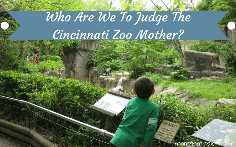Who Are We To Judge The Cincinnati Zoo Mother