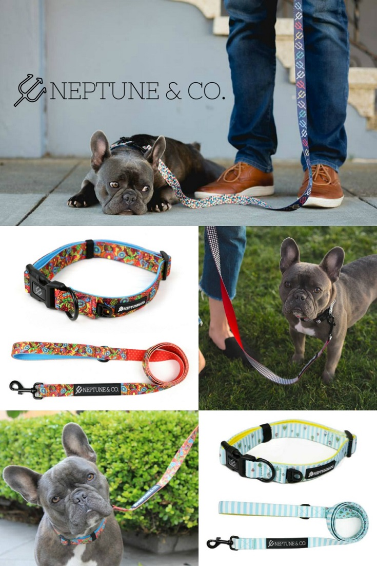 Does your pup need some new accessories? Now you can get what your pup needs while giving back too. Enter to win the Neptune & Co. Dog Accessories Giveaway!
