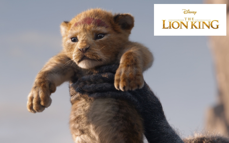Disney's The Lion King Official Movie Trailer was just released and it is truly incredible! Come see Simba become King once again in theaters July 19th.