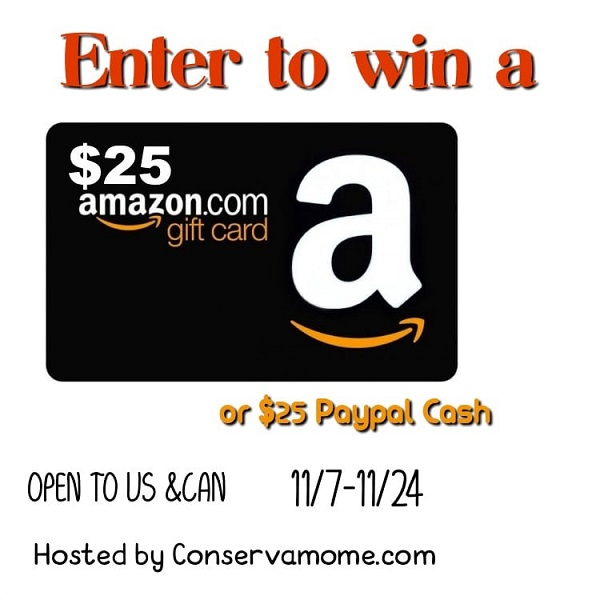 Enter to win the $25 Holiday Gift Card giveaway and let your fingers do the shopping for you! What would you buy with a $25 Amazon Gift Card?